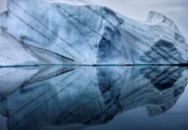 Чистая Арктика Себастьяна Коупленда