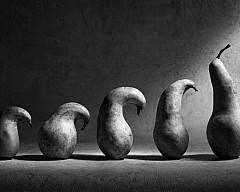 Коллекция клуба «Галерея». Лучшие работы выставочных фотопроектов арт-клуба за три года!
