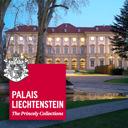 Liechtenstein Museum (Vienna)