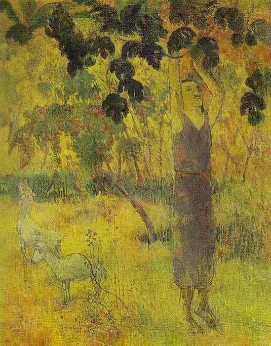 Man Picking Fruit From A Tree, Paul Gauguin