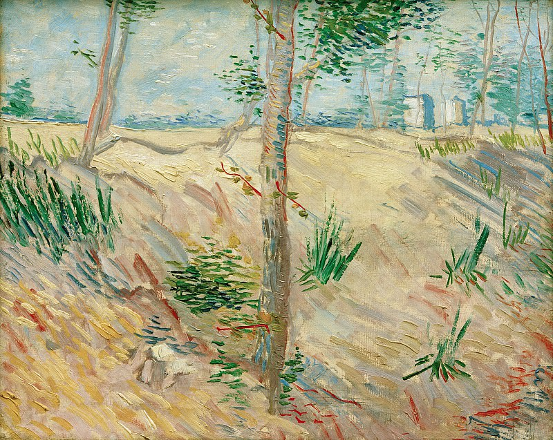 Trees in a Field on a Sunny Day, Vincent van Gogh
