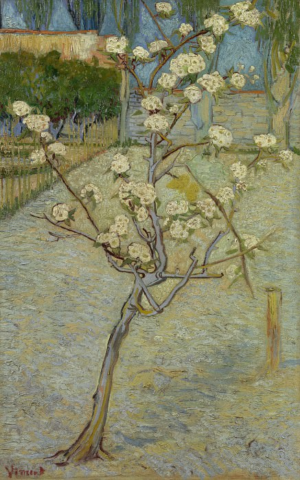 Blossoming Pear Tree, Vincent van Gogh