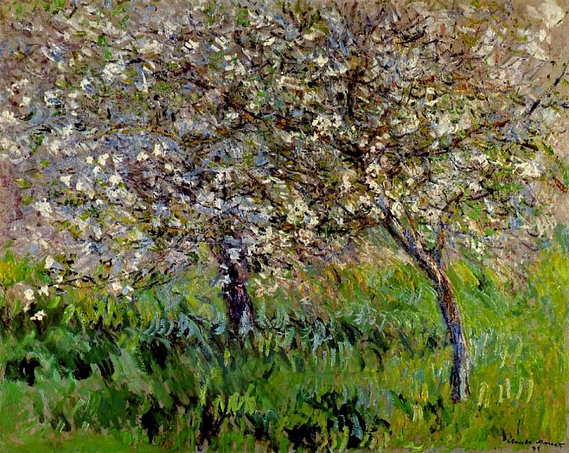 Apple Trees in Bloom at Giverny, Claude Oscar Monet