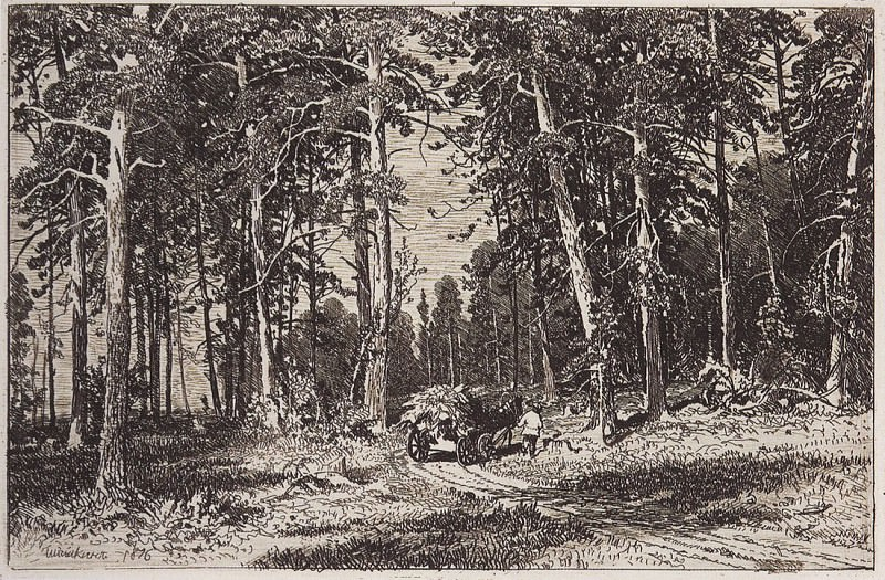 Outskirts of pine groves. 1876 9, 3h13, 3, Ivan Ivanovich Shishkin