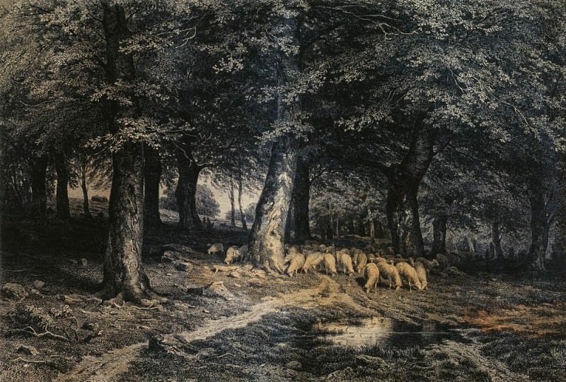 herd of sheep in the forest. Paper. ink, pen 36h53, Ivan Ivanovich Shishkin