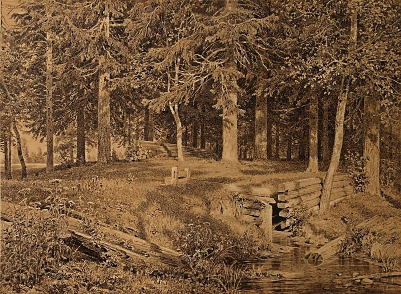 spruce forest the brook. 1890 50, 3h67, 8, Ivan Ivanovich Shishkin