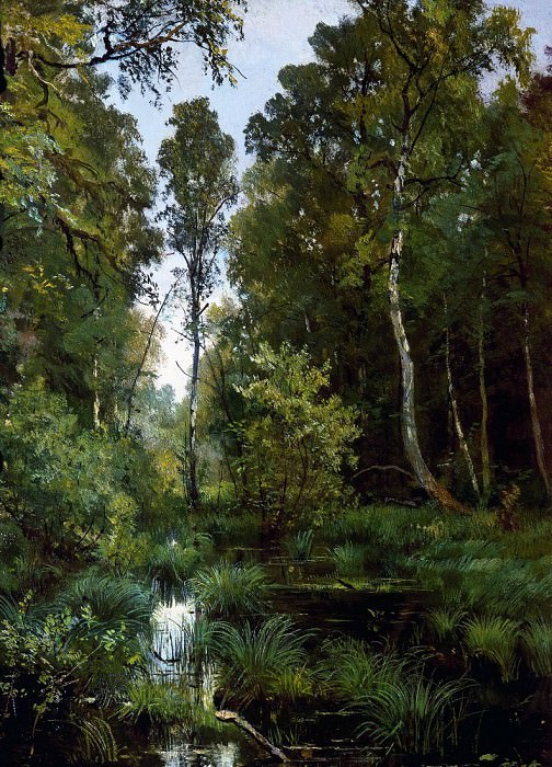 overgrown pond at the edge of the forest. Siverskaya. 1883 56h42, Ivan Ivanovich Shishkin